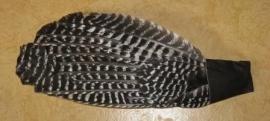 Vleugel Kalkoen