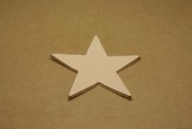Label ster (5 stuks)