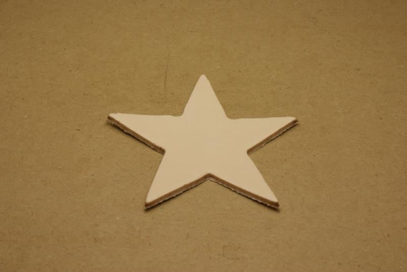 Label ster (25 stuks)
