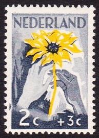 Plaatfout  538 P1  Postfris  Cataloguswaarde 35.00  E-7901