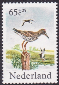 Plaatfout  1303 P  Postfris     Cataloguswaarde  11,00  E-5782