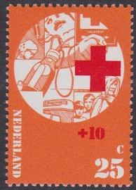 Plaatfout  1017 PM  Postfris Cataloguswaarde 20.00  E-3689