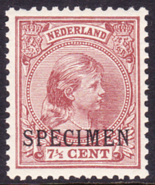 NVPH 36 Koningin Wilhelmina met Machine opdruk SPECIMEN Postfris