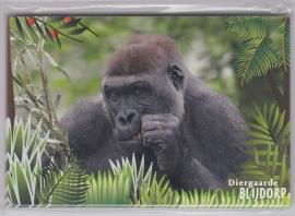 NVPH 2441A/L OP 12 BRIEFKAARTEN VOORGEDRUKT Bedreigde dieren Diergaarde Blijdorp 2007  KR-SP1