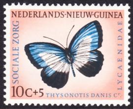 Plaatfout Ned. Nieuw Guinea 64 P  Postfris