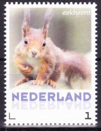 NVPH 3013 Persoonlijke postzegel Eekhoorn Postfris  A-0487