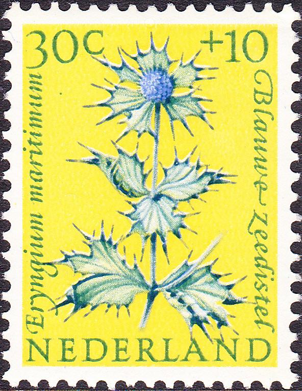 Plaatfout  742 PM2  Postfris  Cataloguswaarde 37.00