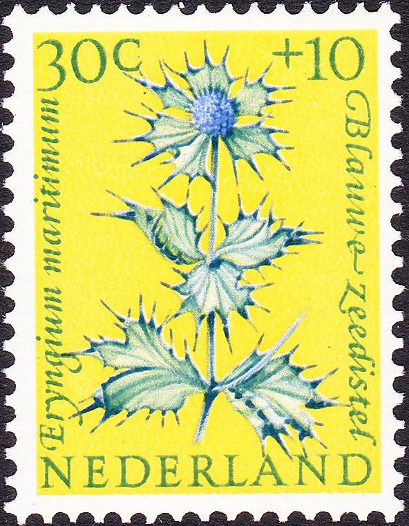 Plaatfout  742 PM  Postfris  Cataloguswaarde 37.00