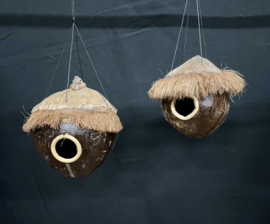 Vogelhuis en/of voederhuis kokosnoot, hoogte 16 cm