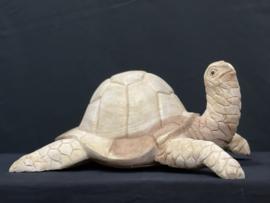 Schildpad van suar hout, 40cm