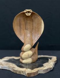 Cobra, 20cm