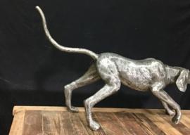 Beeld Greyhound art design
