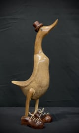 Indische loopeend, 40cm
