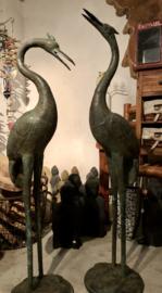 Kraanvogel kijk omlaag XL model  brons legering 110 cm lang