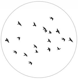 Muurcirkel Birds wit