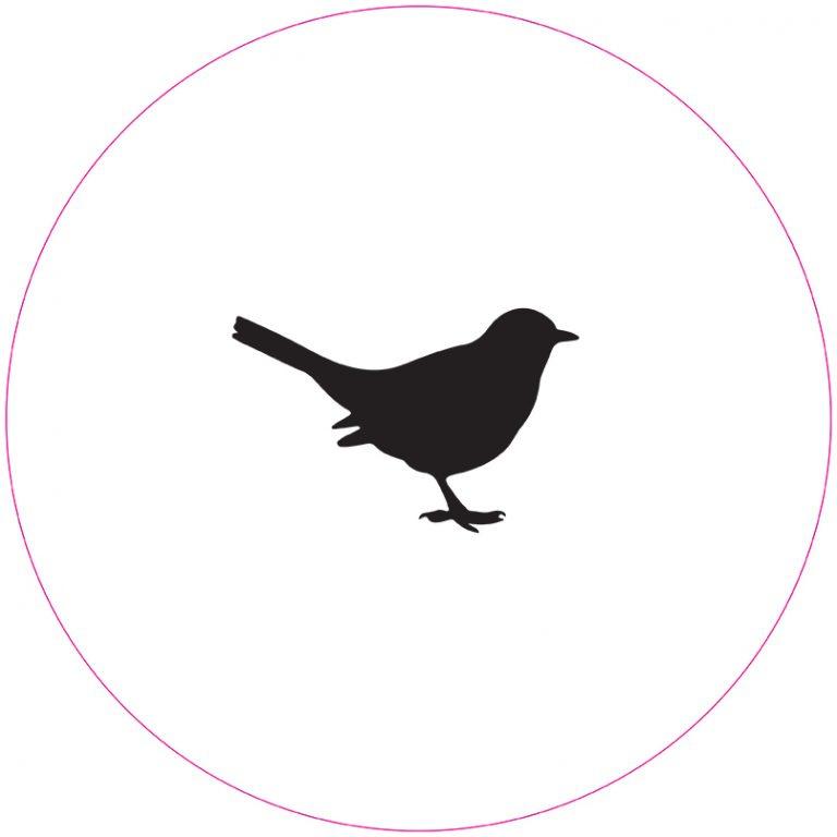 Muurcirkel vogel wit