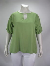 Shirt Holland (05-3676-groen)