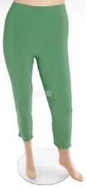 Legging Basic (F01) - 058-Brazil Groen