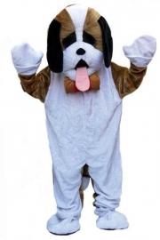 Promotie kostuum hond