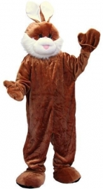 Promotie kostuum konijn