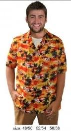 Hawaii shirt tropicana