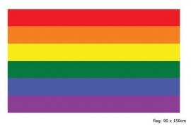 Vlag Regenboog