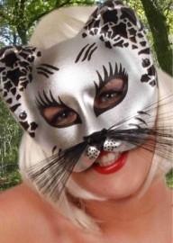 Oog / halfmasker zwart en zilverkleurig kat