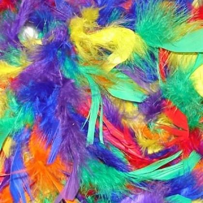 Boa multi color