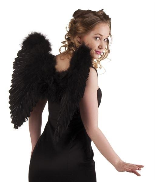 Vleugels veren zwart