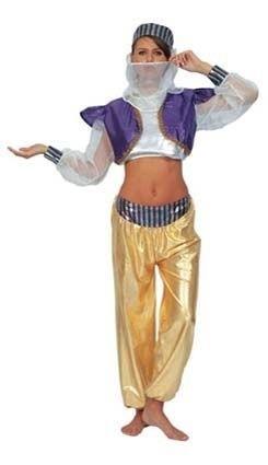 Aladina harem kostuum