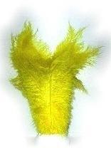 Gele veer floss / pieten veren