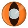 Feest lenzen katten oog oranje