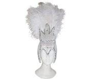 Carnavalstooi veren zilver