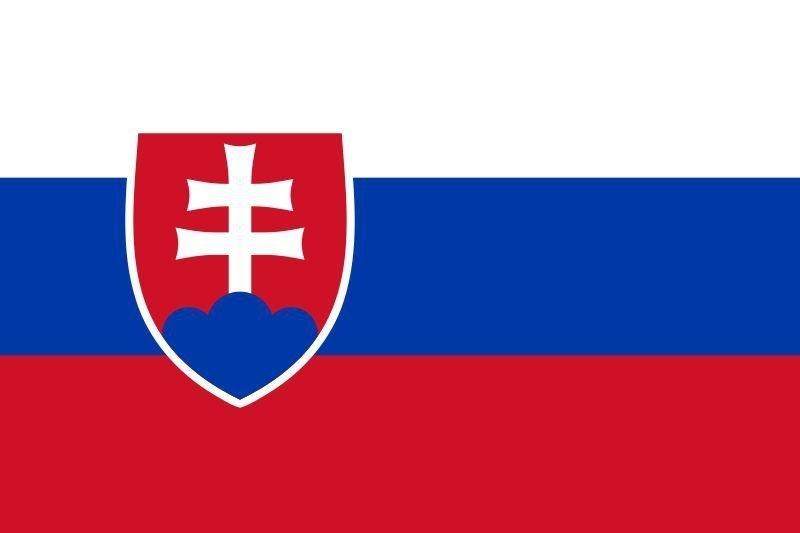 Vlag Slowakije 90x150cm