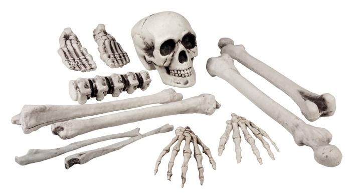 Set van 12 beenderen