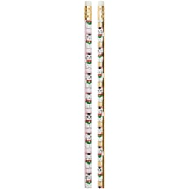 Lucky Cat pencil set