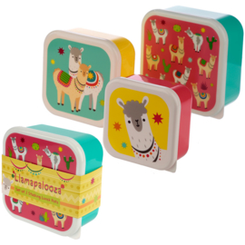 Lunchbox set Llamapalooza
