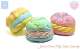 Café de N Dreamy Pastel - Surprise Squishy
