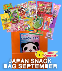 JAPAN SNACK BAG SEPTEMBER! Japanese Candy Bag by MostCutest.nl