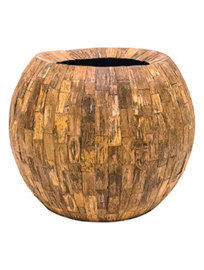 Blossom in wooden bowl.  Totale hoogte 145 cm. .