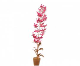 Plant goud/bty 71 cm