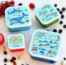 4-delige snackbox set Oceaan