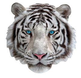 I am White Tiger - 300 stuks