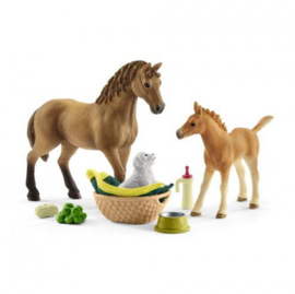 Schleich Dierenverzorgingsset - Quarter Horse (42432)