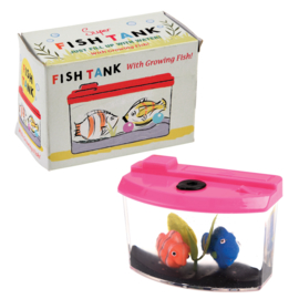 Rex London Mini aquarium met 2 visjes