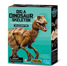 4M - Dinosaur velociraptor