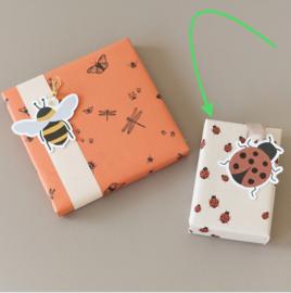 Ladybug 3 meter consumentenrolletje