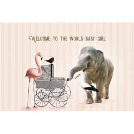 Dubbele wenskaart Welcome baby girl