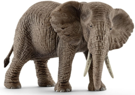 Afrikaanse olifant vrouwtje Schleich (14761)