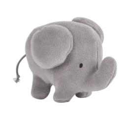 Squaker olifant